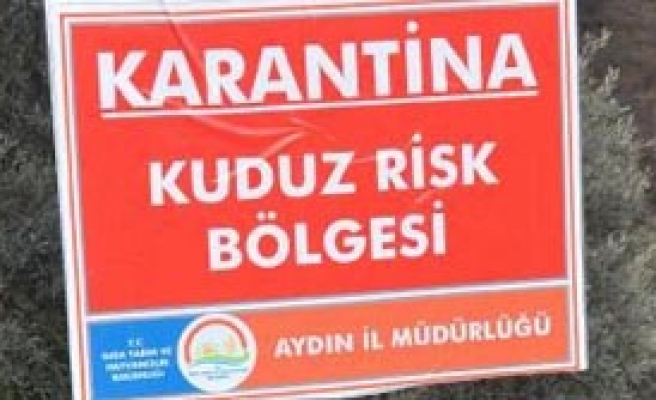 Aydın'da Kuduz Paniği!