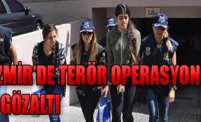 Terör Operasyonu