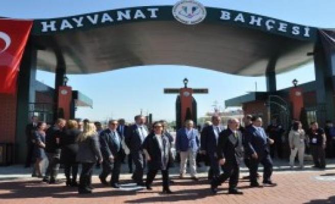 Eskişehir Hayvanat Bahçesi Açıldı
