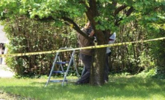 Evinin Bahçesindeki Ağaca Kendini Astı