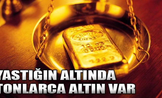 Yastığın Altında Tonlarca Altın Var