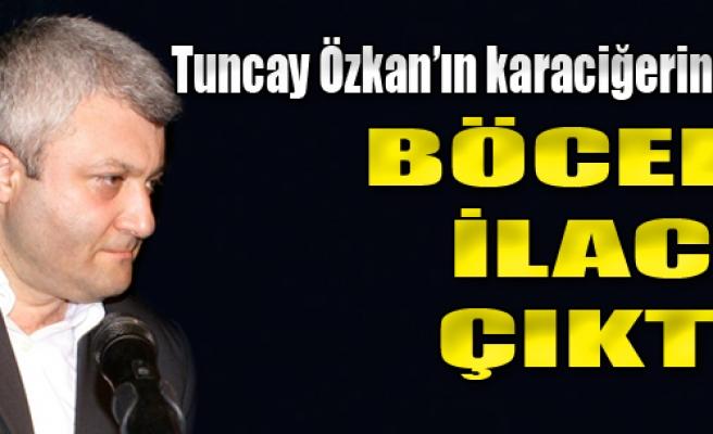 Özkan'ın Karaciğerinde DDT İzine Rastlandı