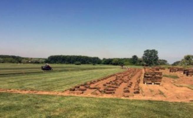 Çim Üretip İhraç Ediyor