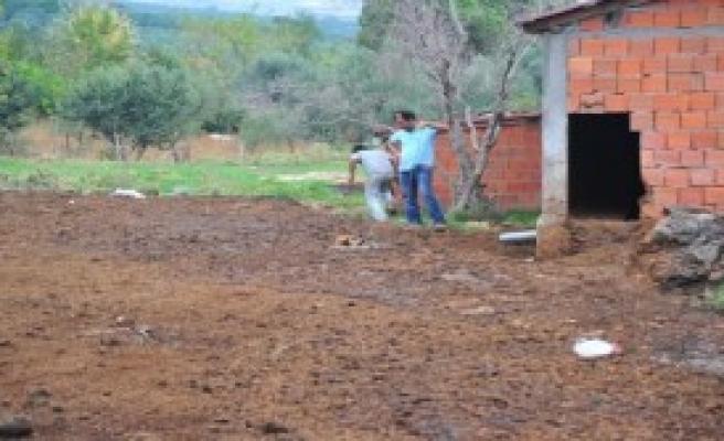 Gübre Yığınına Batan Köpeği İtfaiye Kurtardı