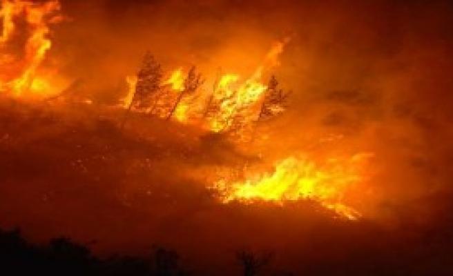 İki İlde 13 Ayrı Orman Yangını