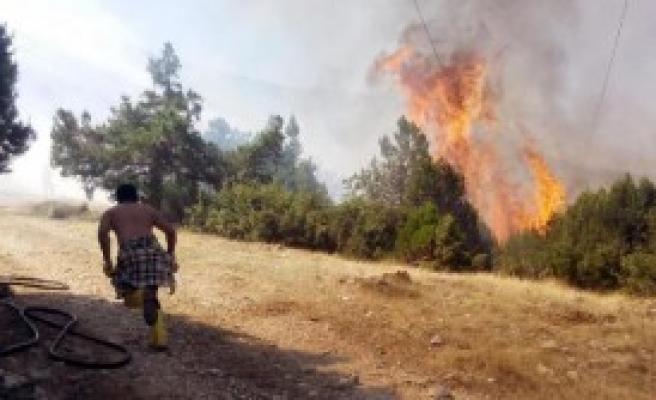 Isparta'da Piknik Ateşi Ormanı Yaktı