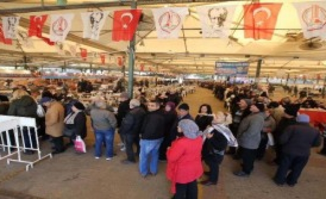 İzmir'de 5 Ton Hamsi Tüketildi