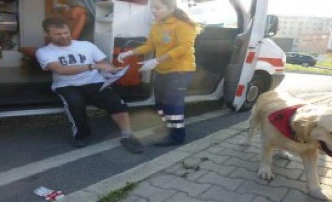 Köpeği Ambulansa Alınmayınca...