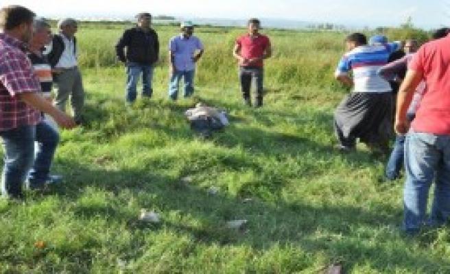 Koyun Otlatırken Üzerine Otomobil Düşen Genç Çift Öldü, 2 Yaralı