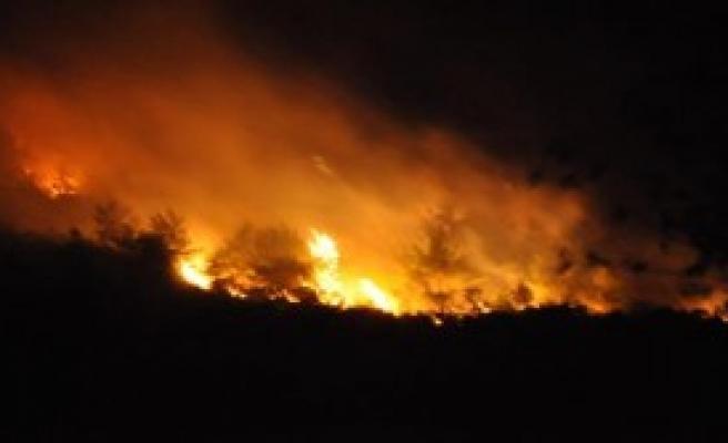 Kozan'da 3 Hektarlık Orman Alanı Yandı