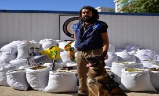 Lice'de Jandarma Ve Polisten Ortak Uyuşturucu Operasyonu
