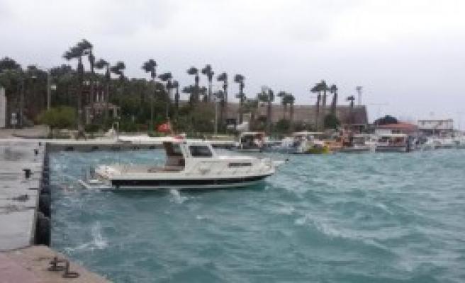 Limanda Tekne Nöbeti