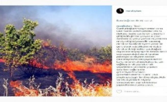 'Bu Ekolojik Katliamdır'