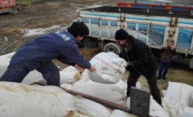 Saman Çuvalları İçinde 60 Kilo Esrar Ele Geçirdi