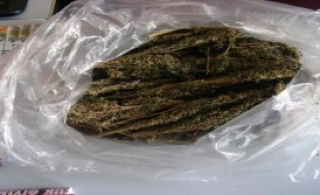 Niğde'de Uyuşturucu Operasyonu: 20 Gözaltı