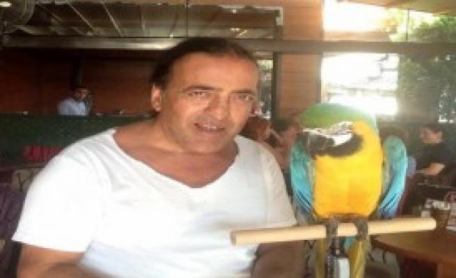Özal'ın Papağanı 'Cabbar' Çalındı