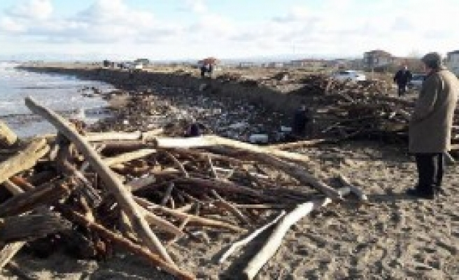 Sahile Vuran Odunları Topladılar
