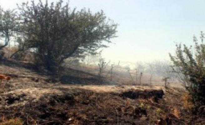 Salihli'de Ormanlık Alan Küle Döndü
