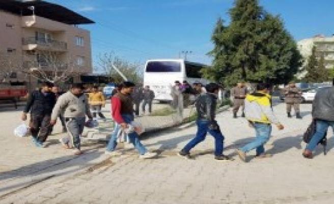 Söke'de 50 Mülteci Yakalandı