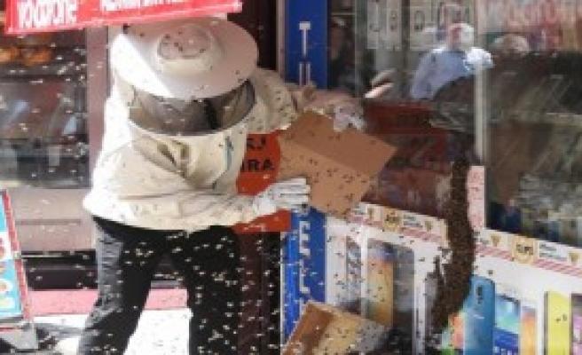 Telefoncu Dükkanını Arılar Bastı