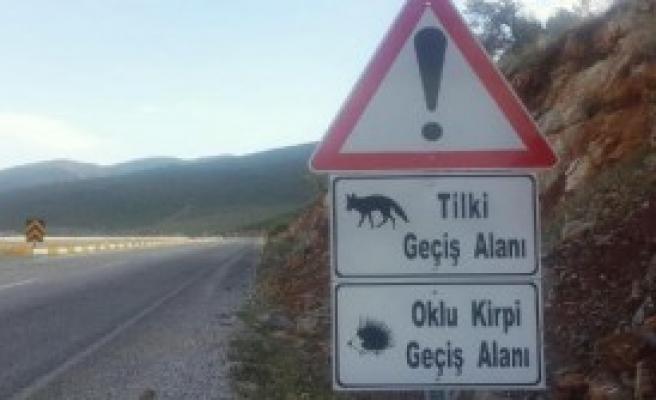 Yaban Hayvanları İçin Tabelalı Uyarı
