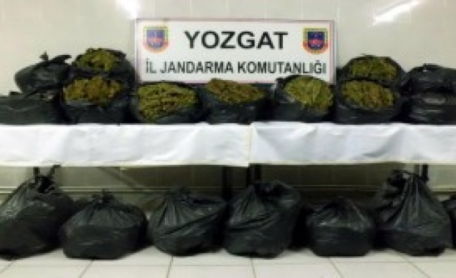 Yozgat'ta 100 Kilo Esrar Ele Geçirildi