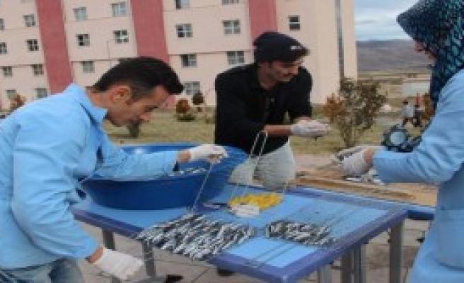Yurt Öğrencilerine Balık Ziyafeti