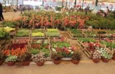 Karşıyaka Çiçek Festivali'yle renklendi