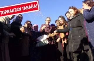 AK Partili Çankırı, o projeyi İzmir'de de...