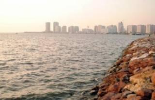 İzmir'de suyun yüzeyini kaplayan 'deniz...