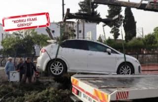 Bodrum'da fırtına kabusu: Ağaçlar devrildi,...