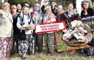 İzmir'in emekçi kadınları iş başında