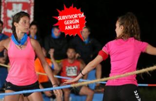 Survivor 2019 Türkiye Yunanistan'da ödül oyununu...