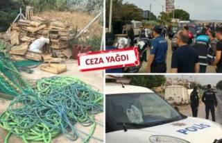 İzmir'de yasa dışı deniz patlıcanı avcılığına...