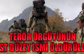 PKK'nın Üst Düzey İsmi Öldürüldü