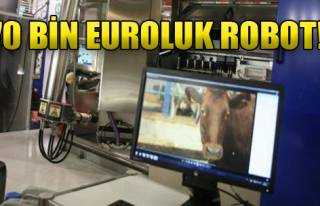 170 Bin Euroluk Robot
