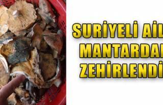Suriyeli Aile Mantardan Zehirlendi!