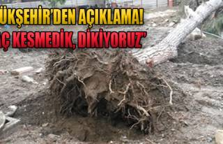 'Ağaç Kesmedik, Dikiyoruz'