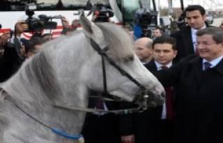 Davutoğlu'nu Atlı Ciritçiler Karşıladı