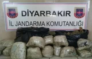 Diyarbakır'da 47 Kilo Esrar, 1 Gözaltı