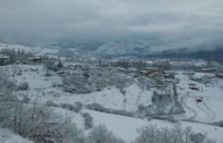 Doğu'da Kar Yağışı Başladı