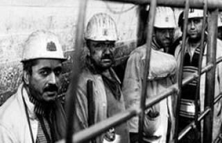 İşçilerin Tercihi Rusya