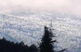 Simav'da Yüksek Kesimlere Kar Yağdı
