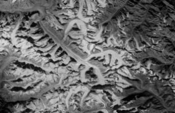 İklim krizi: Bilim insanları uyarıyor