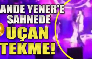 Hande Yener Sahnede Kaza Geçirdi