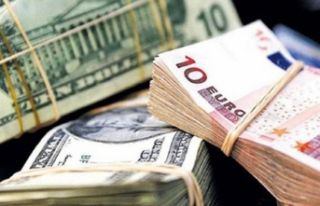 Dolar kaç TL? Euro ne kadar? (17.05.2018 Güncel...