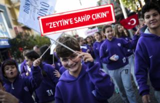 Dünya Zeytin Günü'nde Türkiye'ye çağrı