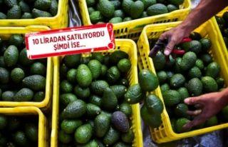 İzmir'de avokado fiyatları şaşırttı!