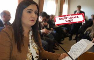 Kılıç, İzmir'le ilgili ulaştırma projelerini...