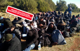 İzmir'de 114 kaçak mülteci yakalandı
